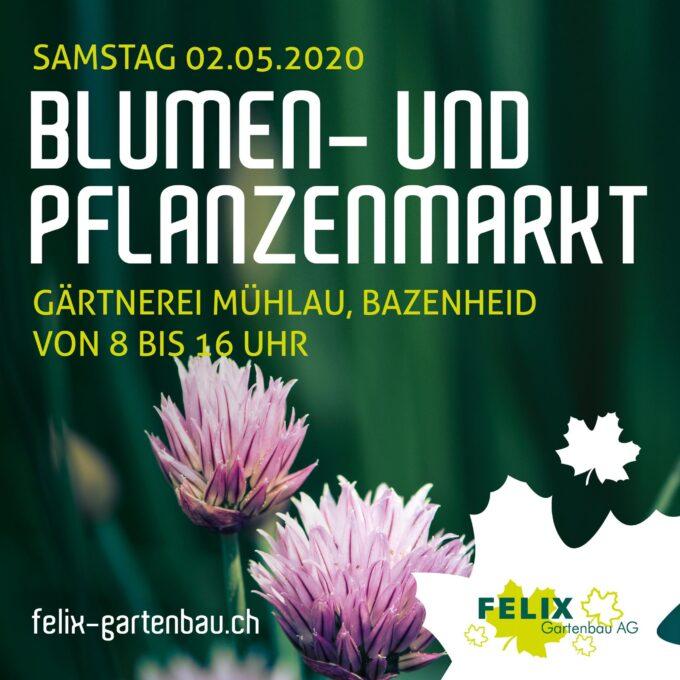 Blumen und Pflanzenmarkt 2. Mai 2020